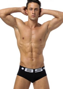 85 Brand Men Underwear Sexy Men Briefs Breathable Mens Slip Cueca Male Panties Underpants Briefs 4