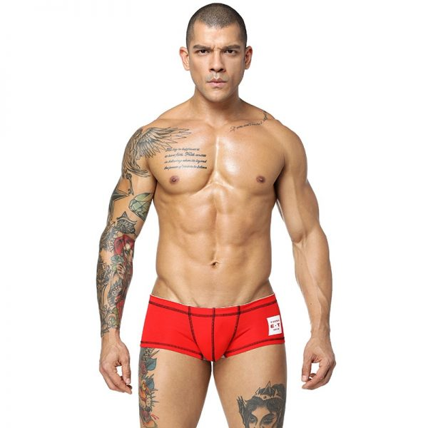 CETHIA Brand Male Underwear Cotton Men Underwear Boxers Shorts Solid Color Men Boxers Cueca Underpants Underwear 2